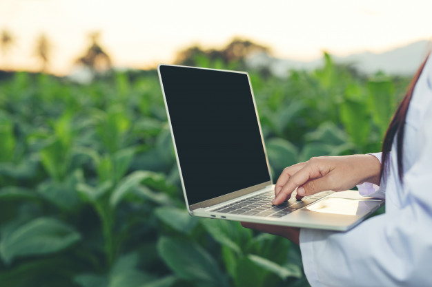 femme qui tient un ordinateur